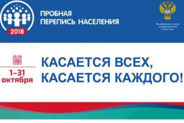 Жителей Нязепетровского района посчитают через интернет