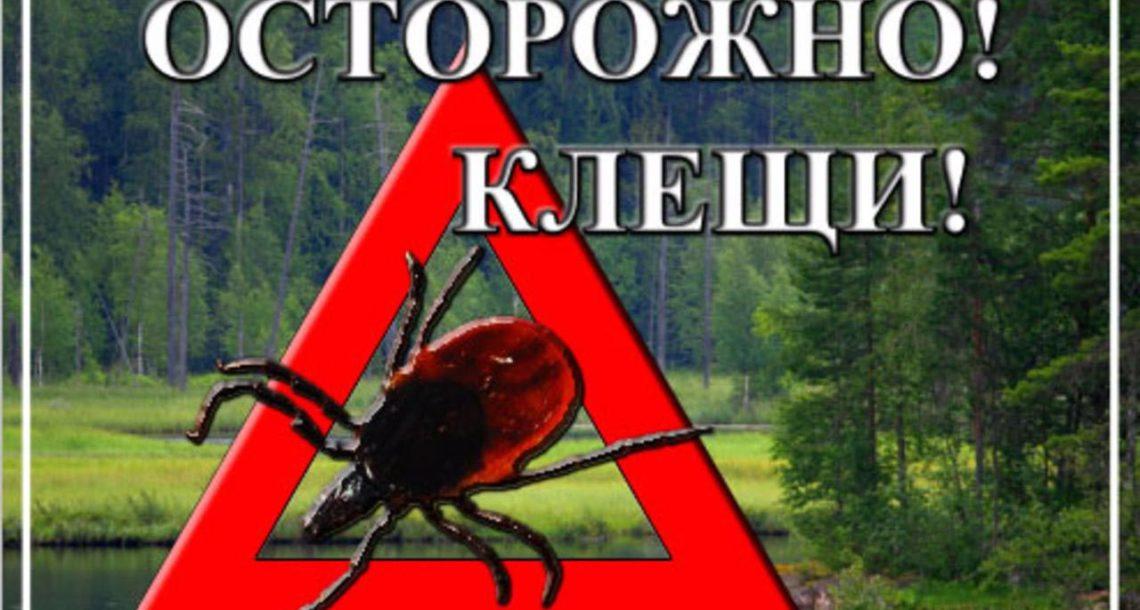 Жители Нязепетровского района страдают от укусов клещей