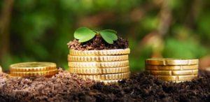 Фермеры Челябинской области получают поддержку от государства