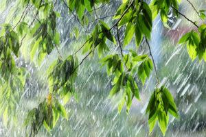 На Южный Урал идут дожди