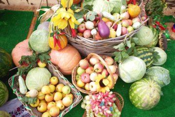 В Челябинске пройдет сельскохозяйственная выставка