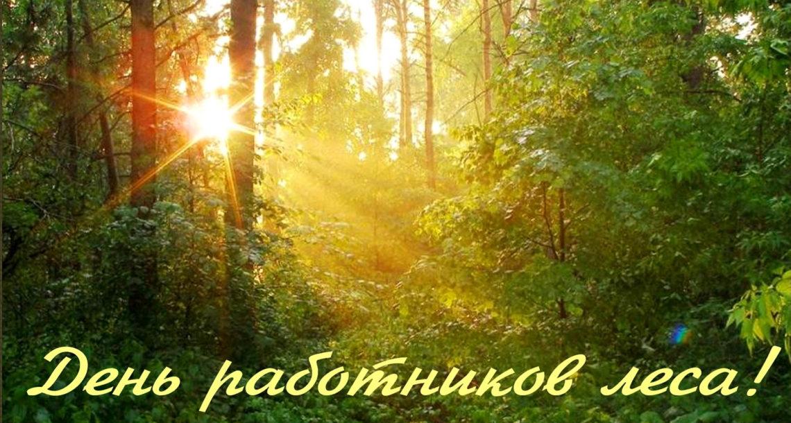 День работников лесного хозяйства