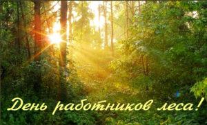 Леса Нязепетровского района