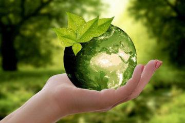 Реализация нацпроекта «Экология» в Челябинской области