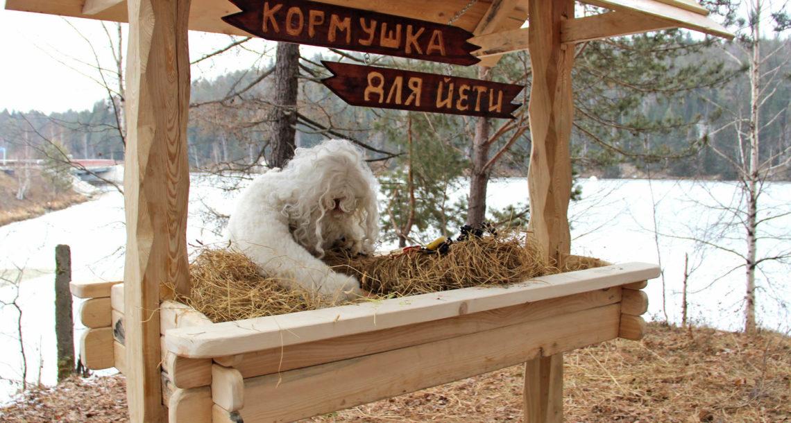 Кормушка для Йети в Нязепетровске