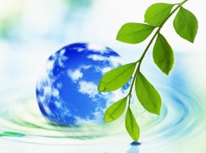 В Челябинской области реализуют инициативы экологов