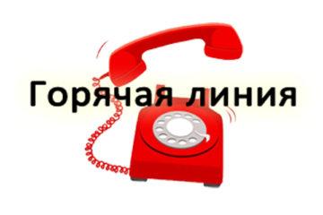 «Горячая линия» цента занятости Нязепетровского района