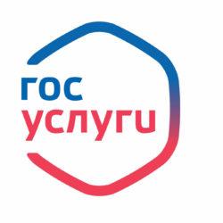 Портал госуслуг Челябинской области