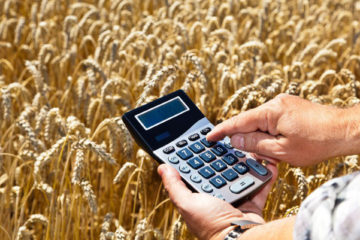 В Челябинской области поддержат фермерские хозяйства