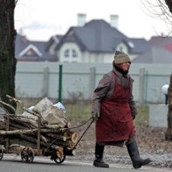 Жители Нязепетровского района получили право на сбор валежника