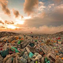 В Челябинской области появятся современные контейнеры для мусора