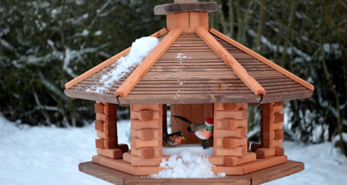 Столовая для птиц в Нязепетровском районе