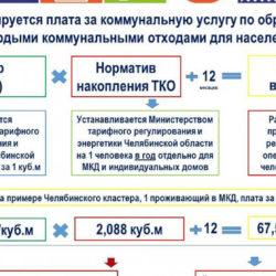 Челябинская область перешла на новую систему обращения с ТКО