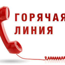 Горячая линия для жителей Нязепетровского района
