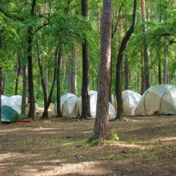 На Южном Урале ищут волонтеров для профильных смен