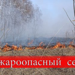 В Челябинской области установлен пожароопасный сезон
