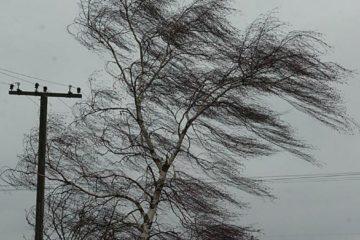 Ветер на Южном Урале