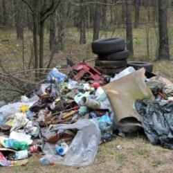 В Нязепетровском районе образовались незаконные свалки