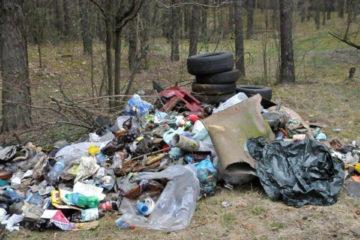 Стихийные свалки в Нязепетровске будут ликвидированы