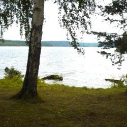 Порядок на водоемах Нязепетровского района зависит от самих жителей