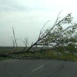 Сильный ветер в Челябинской области