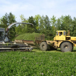 Заготовка сенажа в Нязепетровском районе