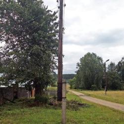 В Нязепетровском районе не могут спилить тополь
