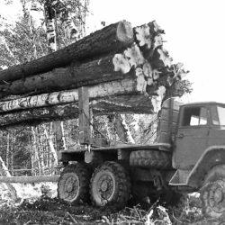 Нязепетровский район в 1966 году