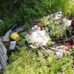 Леса Нязепетровска превращаются в свалки