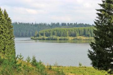 Жителей Нязепетровска приглашают обсудить проект парка