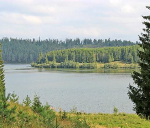 Семейный парк в Нязепетровске