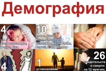 Демографическая ситуация в Нязепетровском районе. Январь