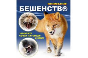 В Нязепетровском районе объявлен карантин по бешенству