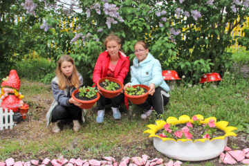 Петунии, выращенные воспитанниками центра помощи детям, украсили Нязепетровск