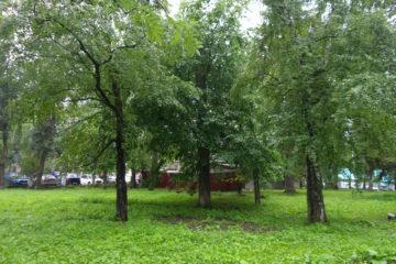 городской сад в Нязепетровске