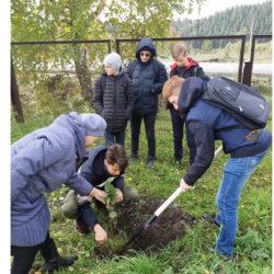 Новый сад заложили в Нязепетровске