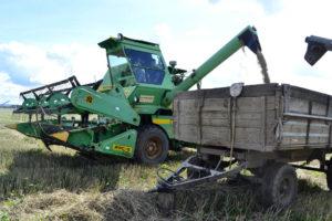Заготовка кормов в Нязепетровском районе