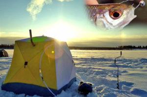 Как согреться на зимней рыбалке?