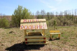 Сад и родник в Нязепетровском районе