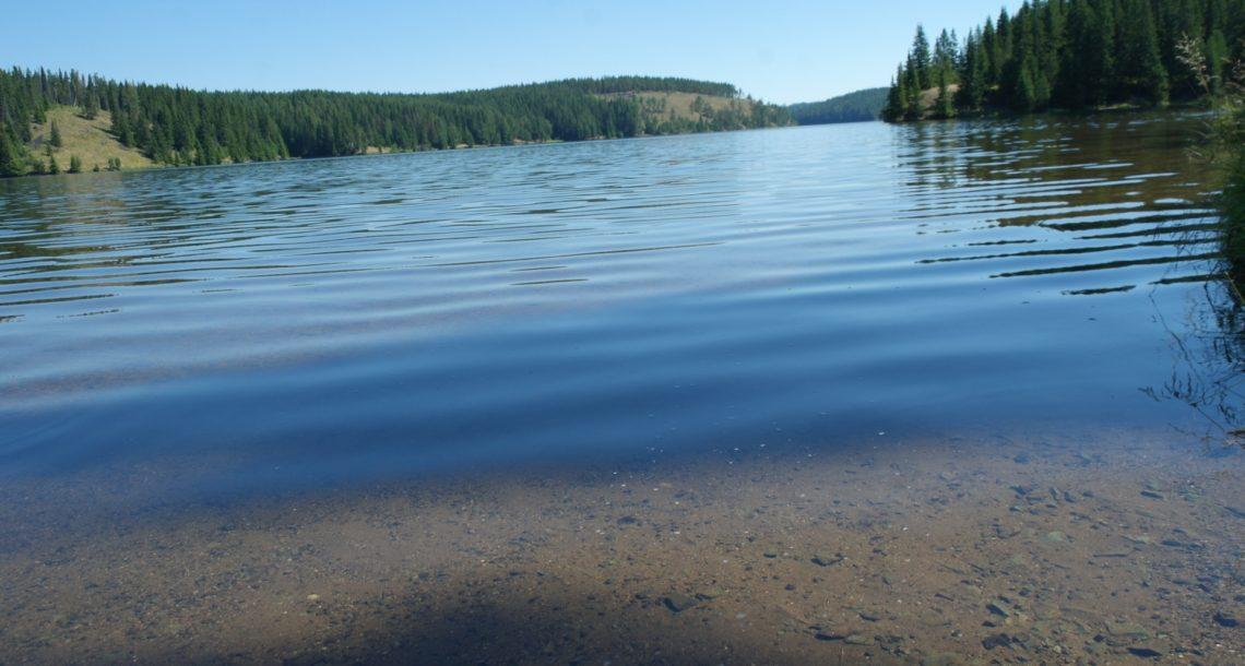 Дети в воде не должны оставаться без присмотра