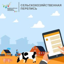 В Нязепетровском районе пересчитают хозяйства в сельской местности