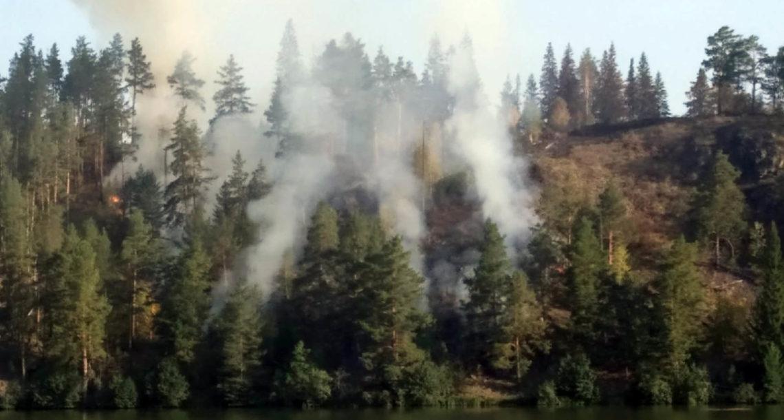 4 крупных пожара произошло в Нязепетровском районе